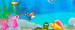 Buba Fish